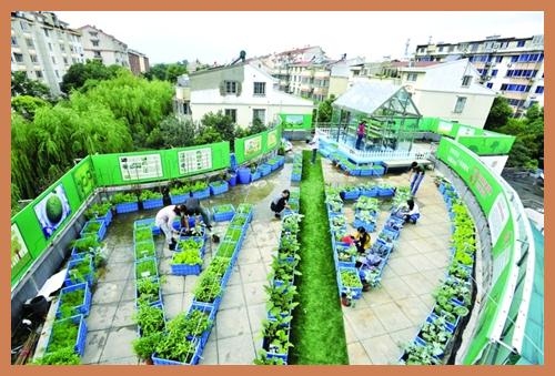 最实用楼顶菜园设计图
