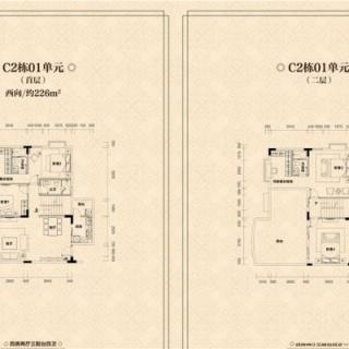 C2栋01单元户型图