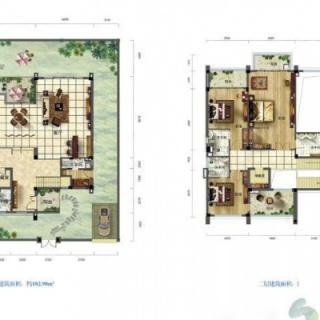 别墅户型图C3